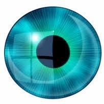 ZG (зоркий глаз)